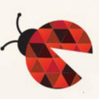 Bug Bounty Channel