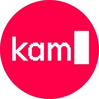 kamyshev.code
