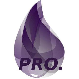pro.elixir